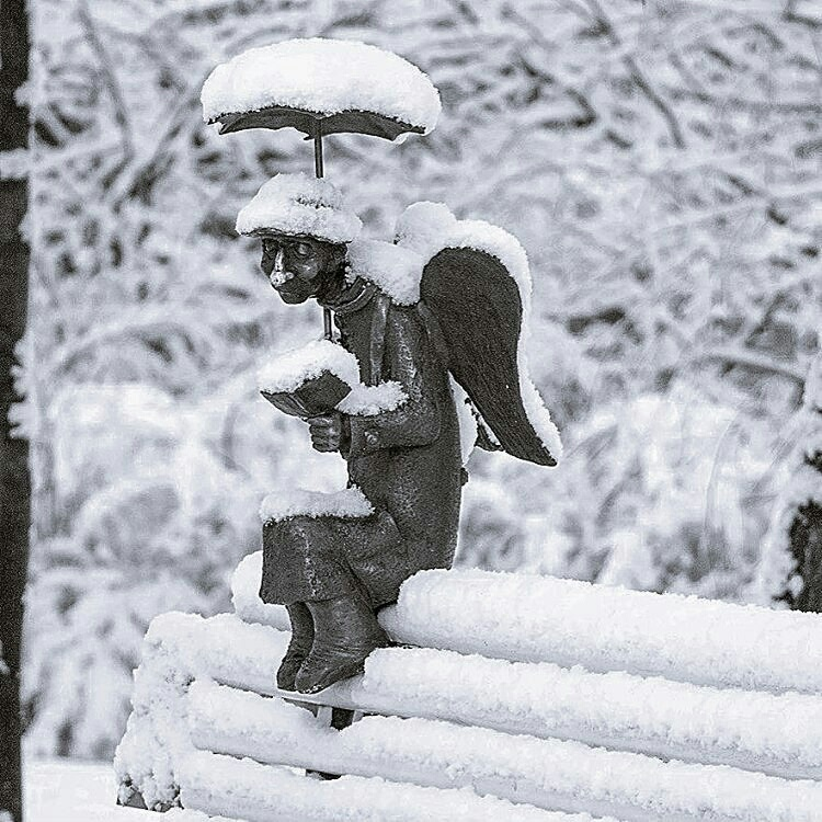 angel-winter