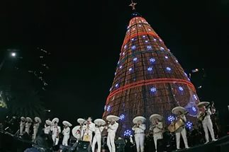 самая высокая новогодняя елка в мире
